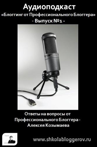 Аудиоподкаст - Блоггинг от Профессионального Блоггера
